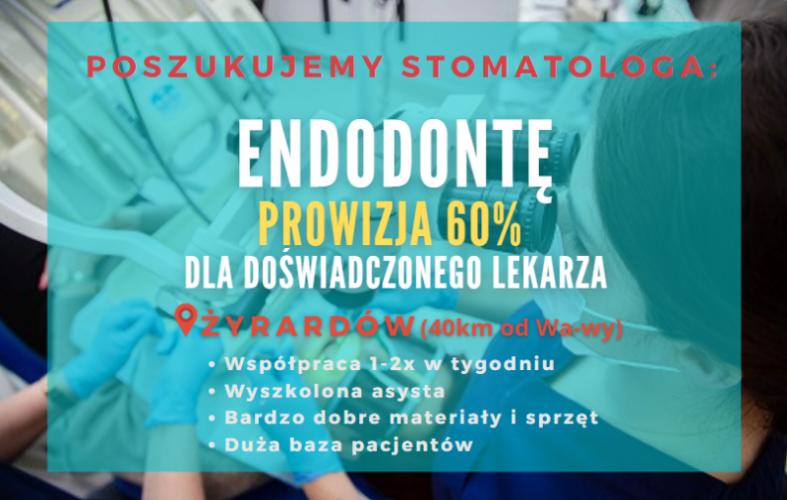 Doświadczony lekarz endodonta  - 60% - 1-2x w tygodniu