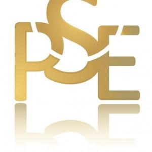 Logo kolor br (2)