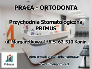 Praca - Ortodonta - Konin