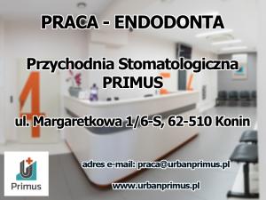 Praca - Endodonta - Konin