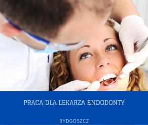 Szukam Lekarza Endodonty